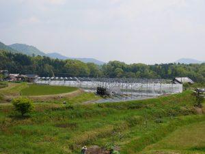 ソーラーシェアリングにすると俄然畑が面白くなった